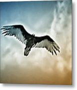 Flying Falcon Metal Print