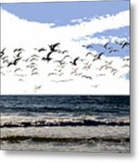 Flying Gulls Metal Print