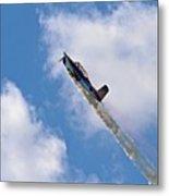Flying High 1 Metal Print