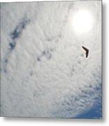 Flying High Metal Print by Ekta Gupta