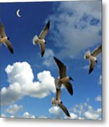 Flying High In The Clouds Metal Print