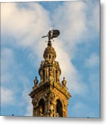 Flying Into The Clouds Metal Print