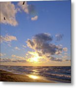 Flying Onshore Two Metal Print