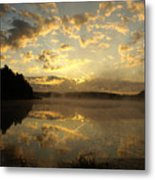 Flying Reflections Metal Print