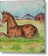 Foal In Grass Metal Print