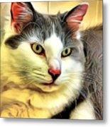 Focused Feline Metal Print
