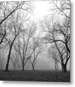 Fog 3 Metal Print by Beverly Hammond