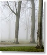 Fog Amongst The Trees Metal Print
