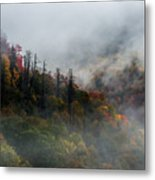 Fog And Color. Metal Print