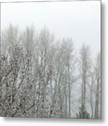 Fog And Light Snow Metal Print