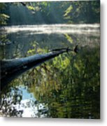 Fog And Reflection Of Stream Metal Print