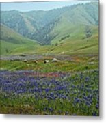Fog And Wildflowers At Bear Mountain Metal Print