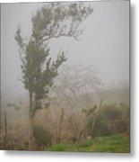 Fog And Wind Metal Print