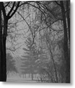 Fog At Metro Beach Metal Print