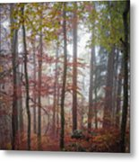 Fog In Autumn Forest Metal Print