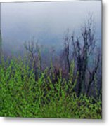 Fog In The Mountains Metal Print