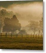 Fog In The Park Metal Print