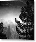 Fog In The Trees Metal Print