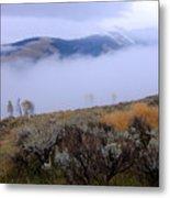 Fog In The Valley Metal Print