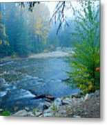 Fog In The Wenatchee Forest Metal Print