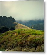 Fog Over The Lagoon Metal Print