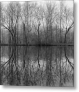 Foggy Lagoon Reflection #3 Metal Print