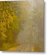 Foggy Autumn Morn Metal Print