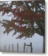 Foggy Autumn Morning In Cades Cove Metal Print