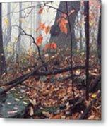 Foggy Fall Woodland Morning Metal Print