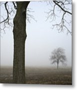 Foggy Field Metal Print