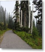 Foggy Forest Metal Print by Silvie Kendall