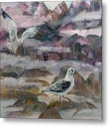 Foggy Gulls Metal Print