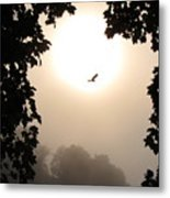 Foggy Heron Flight Metal Print