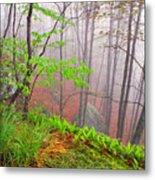 Foggy Misty Spring Morning Metal Print