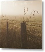 Foggy Morning At A Farm Metal Print