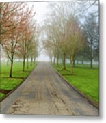 Foggy Morning At The Park Metal Print