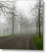 Foggy Morning At The Park Winding Path Metal Print