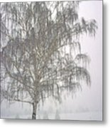 Foggy Morning Landscape 11 Metal Print