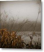Foggy Morning Marsh Metal Print