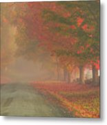 Foggy Morning On Cloudland Road Metal Print