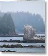 Foggy Morning On The Pacific Coast Metal Print