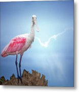 Foggy Morning Spoonbill Metal Print
