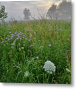 Foggy Prairie In Glacial Park In Mchenry County Metal Print