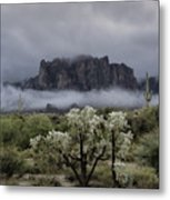 Foggy Winter Morning In The Supes  Metal Print