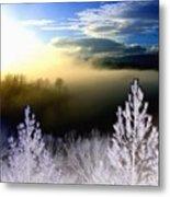 Foggy Winter Sunset Metal Print