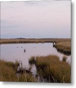 Folgers Marsh Nantucket Metal Print