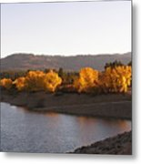Foliage At Jackson Lake Metal Print
