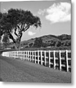 Follow The Fence Metal Print