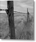 Follow The Wire Metal Print