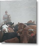 Food For Thought Metal Print